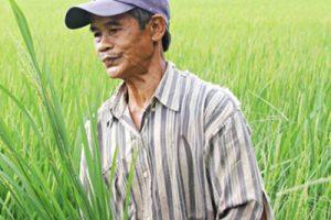 Anh Trương V. H (Quảng Bình)