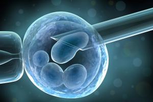 [Tư vấn] 7 trường hợp nên thực hiện sàng lọc di truyền trước chuyển phôi.