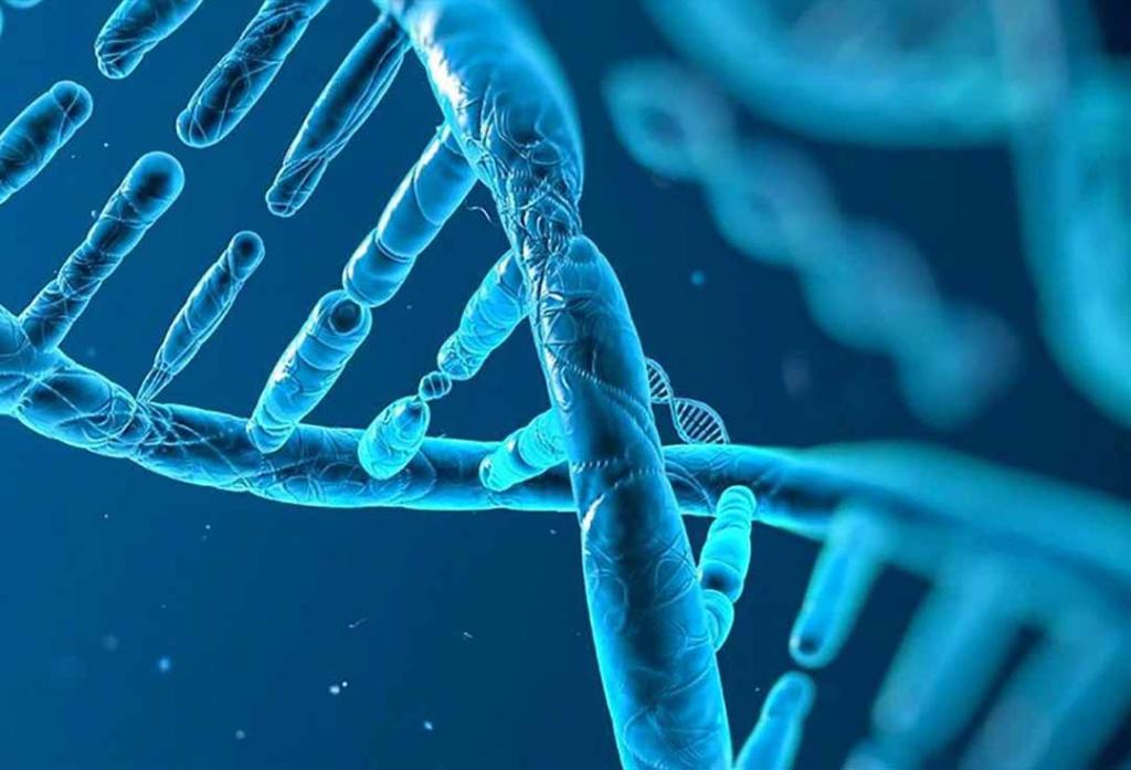 Bệnh ung thư tuyến tiền liệt được đưa vào dạng bệnh do di truyền