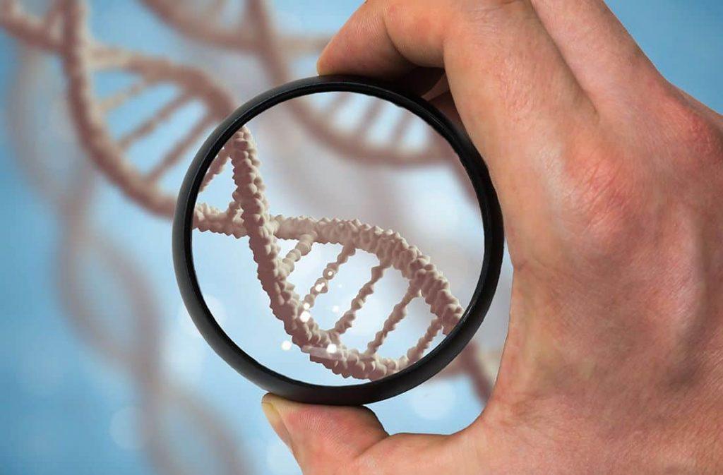 Xét nghiệm di truyền tiền làm tổ giúp sàng lọc trước sinh sớm