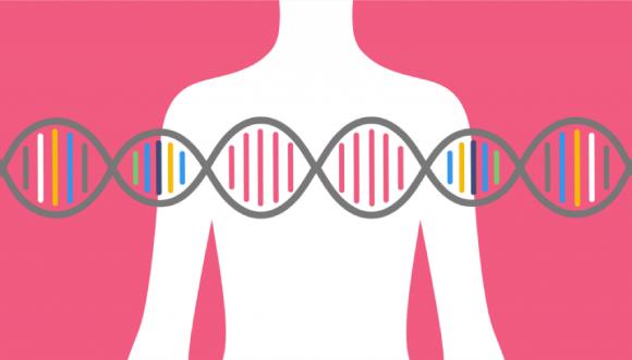 Hội chứng Lynch được hình thành do những đột biến ở gen