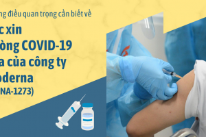 Những cần biết về vắc xin phòng COVID-19 của công ty Moderna (mRNA-1273)
